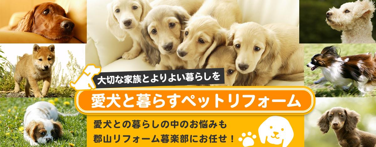 愛犬と暮らすペットリフォーム